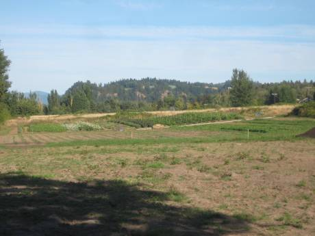 the C.R.O.P.S. acreage, September 2009